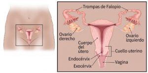 Reconocer cáncer de cuello uterino